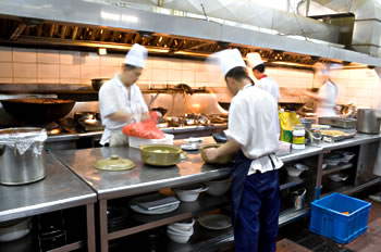 HACCP Kitchen Busy